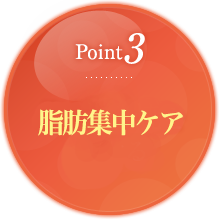 Point3 脂肪燃焼を助ける